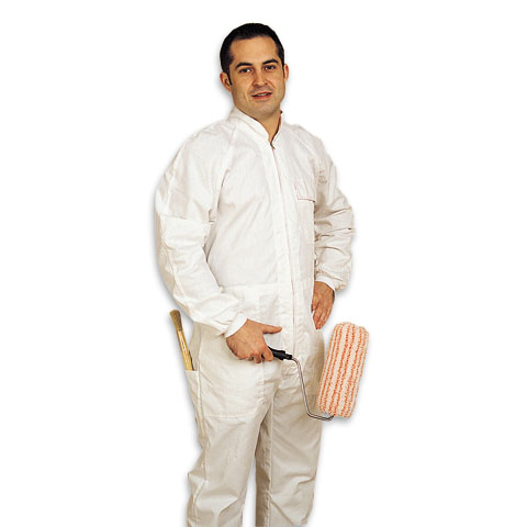 Professional painter overall